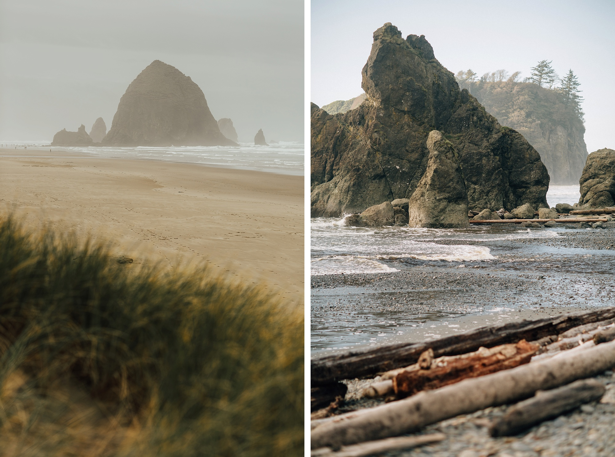 Cannon Beach & LaPush